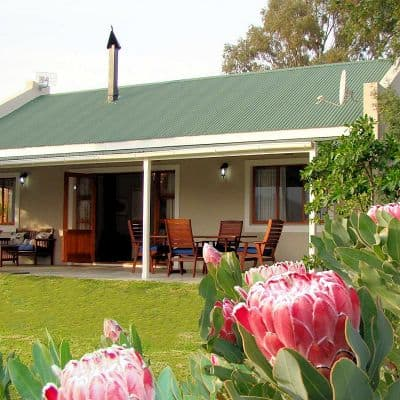 Wild Olive Cottage Cederberg self-catering accommodation guest farm